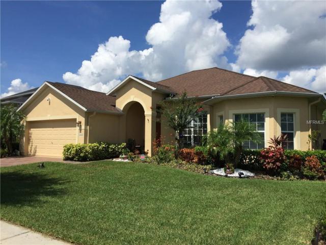 2664 Star Grass Circle, Kissimmee, FL 34746 (MLS #O5525667) :: RealTeam Realty