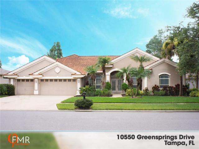 10550 Greensprings Drive, Tampa, FL 33626 (MLS #O5526007) :: Delgado Home Team at Keller Williams