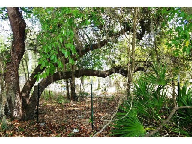 13709 S Apopka, Orlando, FL 32821 (MLS #O5527593) :: Sosa | Philbeck Real Estate Group