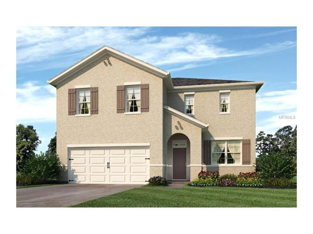 170 Lazy Willow Drive, Davenport, FL 33837 (MLS #O5527803) :: The Duncan Duo & Associates