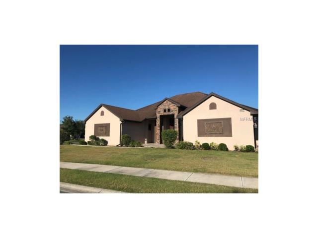 8908 Beacon Hill Avenue, Mount Dora, FL 32757 (MLS #O5528877) :: KELLER WILLIAMS CLASSIC VI