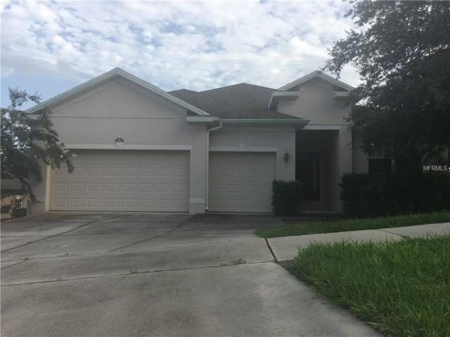 1893 Sanderling Drive, Clermont, FL 34711 (MLS #O5530926) :: Baird Realty Group