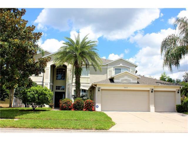 10033 Hart Branch Circle, Orlando, FL 32832 (MLS #O5531096) :: Sosa | Philbeck Real Estate Group