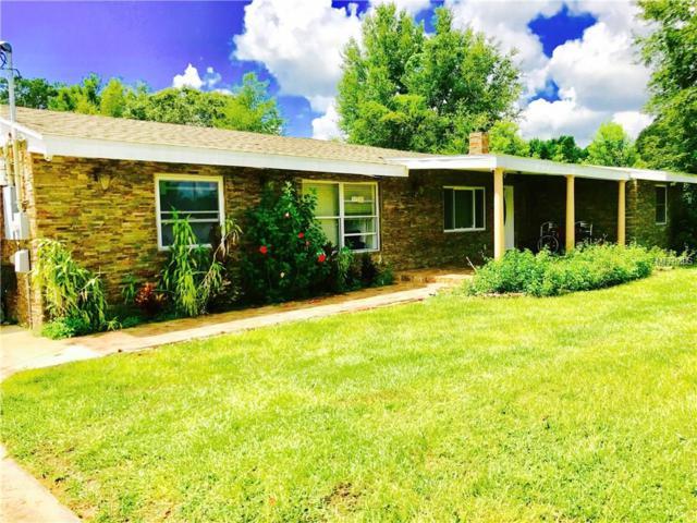 3442 Old Winter Garden, Gotha, FL 34734 (MLS #O5531168) :: G World Properties