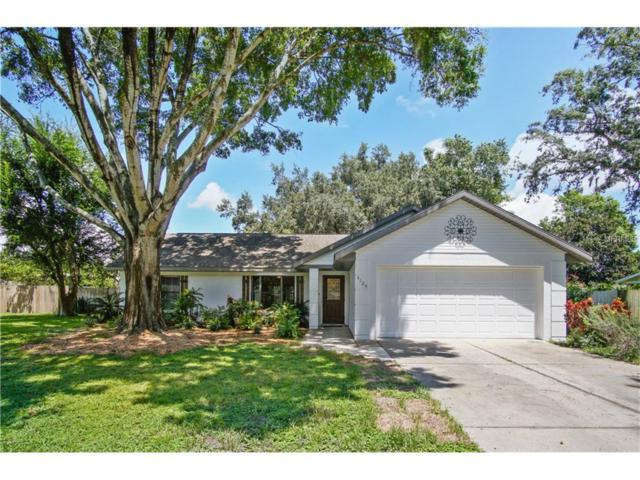4125 Dora Wood Drive, Mount Dora, FL 32757 (MLS #O5531206) :: White Sands Realty Group
