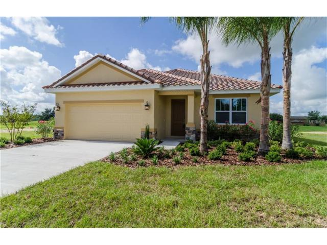 24510 Calusa Boulevard, Eustis, FL 32736 (MLS #O5531313) :: Sosa | Philbeck Real Estate Group
