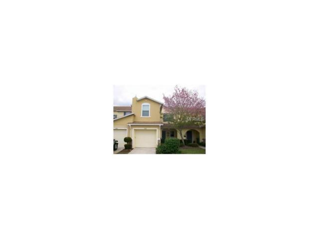 2595 Aventurine Street, Kissimmee, FL 34744 (MLS #O5531332) :: Premium Properties Real Estate Services