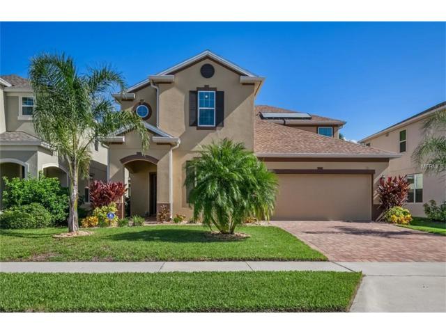 5209 Villa Rosa Avenue, Saint Cloud, FL 34771 (MLS #O5531336) :: Sosa | Philbeck Real Estate Group