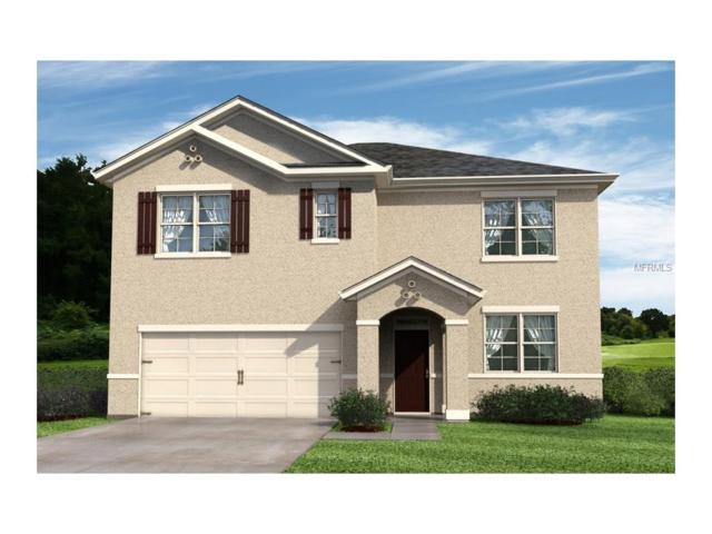 3433 Berkshire Woods Terrace, Deltona, FL 32725 (MLS #O5531383) :: Premium Properties Real Estate Services