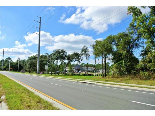 3690 Sandlor Drive, Deltona, FL 32738 (MLS #O5531583) :: Premium Properties Real Estate Services