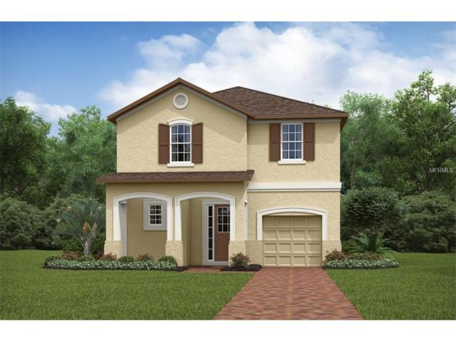 1841 Sawyer Palm Place, Kissimmee, FL 34747 (MLS #O5531625) :: RE/MAX Realtec Group