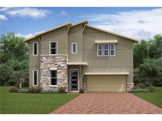 9025 Sunshine Ridge Loop, Kissimmee, FL 34747 (MLS #O5531706) :: RE/MAX Realtec Group