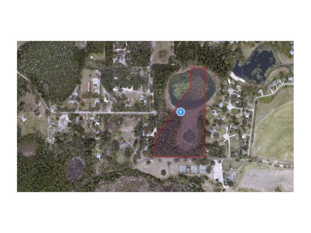 Mckinley Road, Eustis, FL 32726 (MLS #O5531739) :: RE/MAX Realtec Group