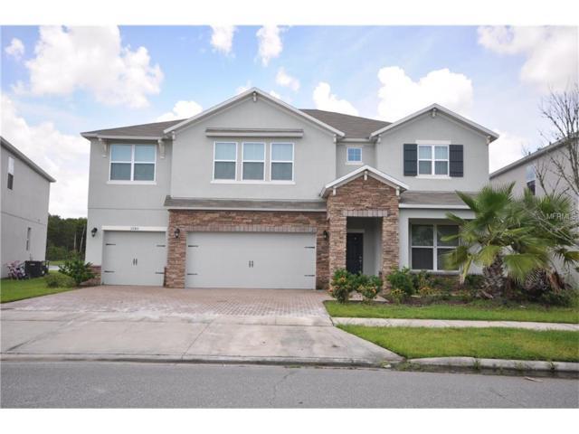 3740 Mt Vernon Way, Kissimmee, FL 34741 (MLS #O5532689) :: Team Bohannon Keller Williams, Tampa Properties