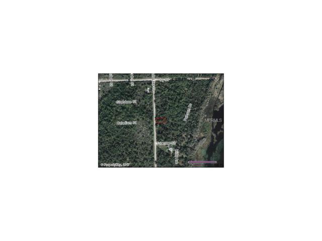 801 Highlands Lake Drive, Lake Placid, FL 33852 (MLS #O5534119) :: The Duncan Duo Team