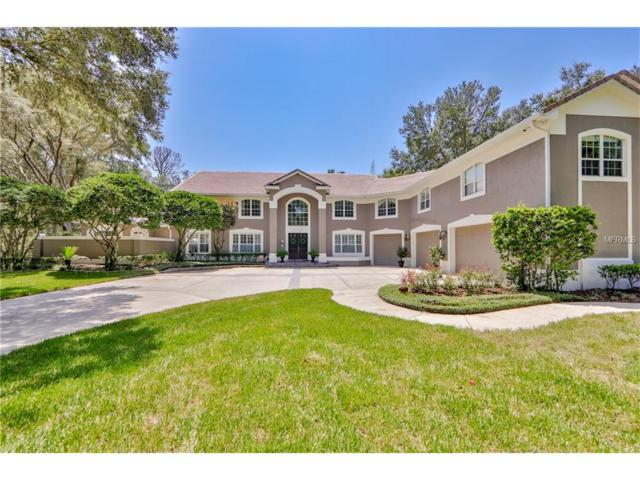 3401 Jericho Place, Apopka, FL 32712 (MLS #O5534223) :: Ideal Florida Real Estate