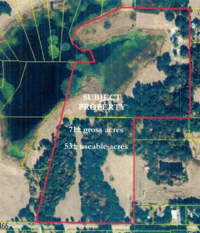 County Road 466, Oxford, FL 34484 (MLS #O5534559) :: Premium Properties Real Estate Services
