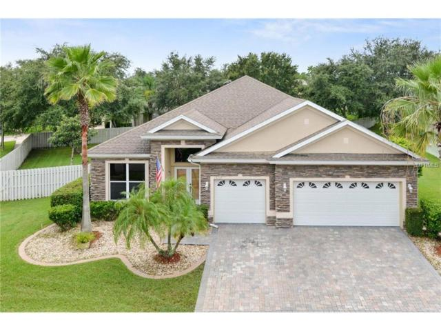 13232 Paloma Drive, Orlando, FL 32837 (MLS #O5535160) :: G World Properties