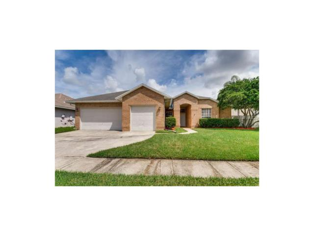 4062 Kiawa Drive, Orlando, FL 32837 (MLS #O5535210) :: G World Properties