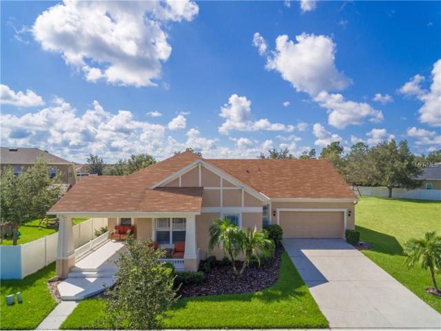 14420 Paradise Tree Drive, Orlando, FL 32828 (MLS #O5535908) :: G World Properties