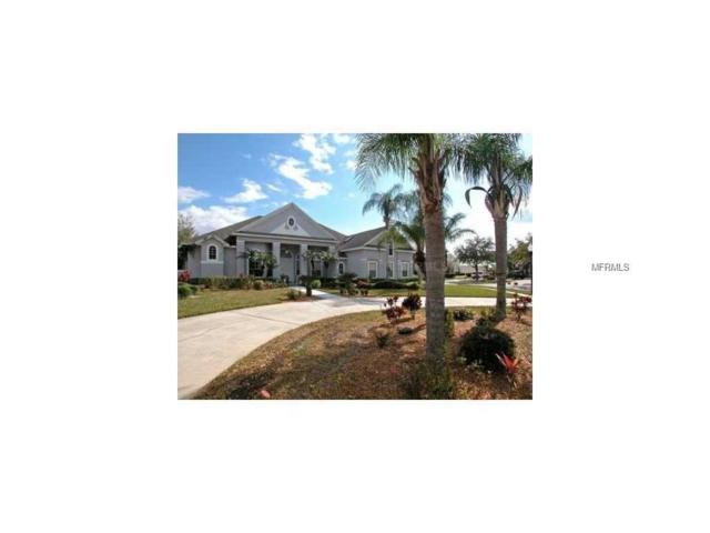 3921 Hunters Isle Drive, Orlando, FL 32837 (MLS #O5535982) :: G World Properties