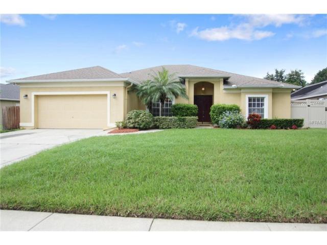 3992 Shadowind Way, Gotha, FL 34734 (MLS #O5535993) :: G World Properties