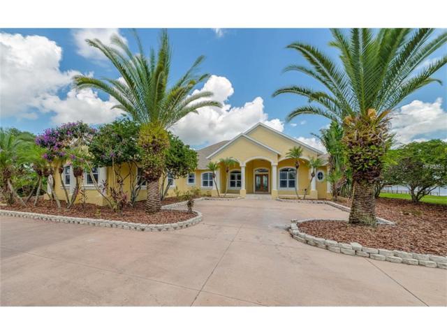 5095 Bullis Road, Saint Cloud, FL 34772 (MLS #O5536057) :: Godwin Realty Group