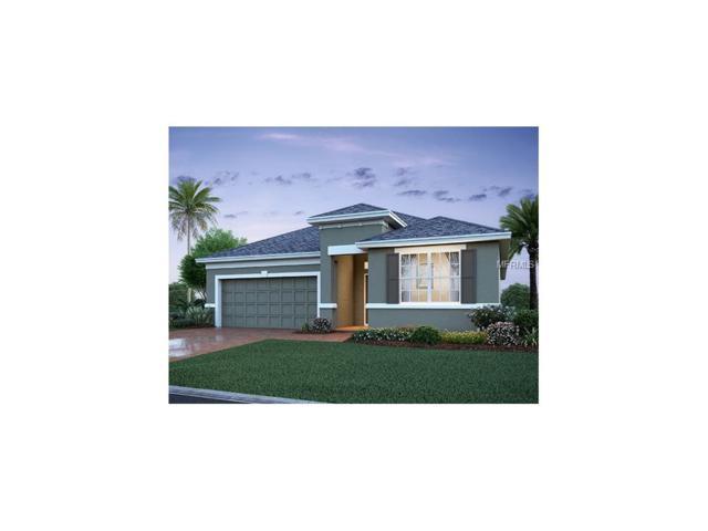 1160 Playa Del Sol Lane, Saint Cloud, FL 34771 (MLS #O5536092) :: G World Properties