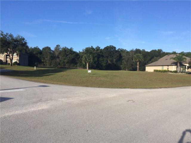 24056 Weldon Drive, Eustis, FL 32736 (MLS #O5536278) :: Premium Properties Real Estate Services