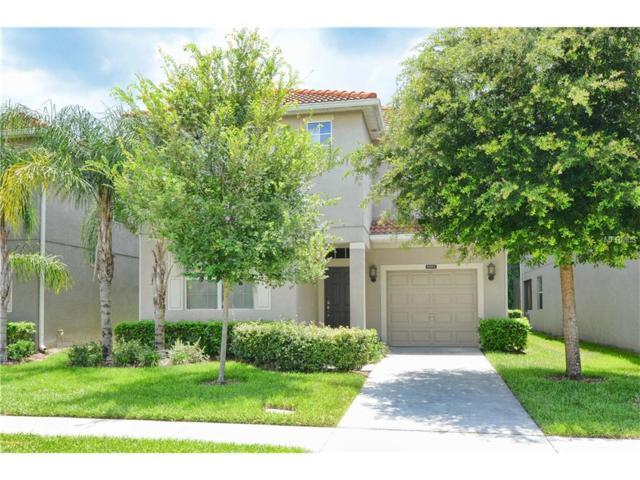 8882 Candy Palm Road, Kissimmee, FL 34747 (MLS #O5536331) :: G World Properties