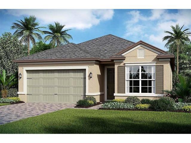 2196 Antilles Club Drive, Kissimmee, FL 34747 (MLS #O5536429) :: G World Properties