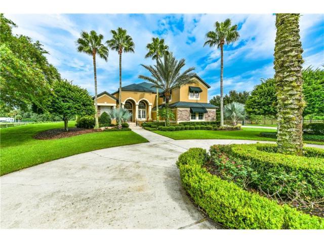 1801 Brooks Lane, Oviedo, FL 32765 (MLS #O5536460) :: G World Properties