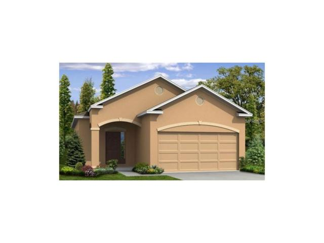 4664 Lindever Lane, Palmetto, FL 34221 (MLS #O5536570) :: Medway Realty