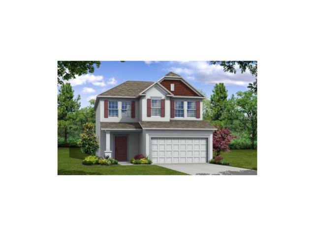 4668 Lindever Lane, Palmetto, FL 34221 (MLS #O5536576) :: Medway Realty