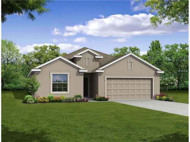 4110 Long Branch Lane, Palmetto, FL 34221 (MLS #O5536601) :: Medway Realty