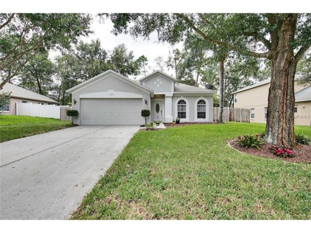 1224 Pat Patterson Court, Apopka, FL 32712 (MLS #O5536769) :: Mid-Florida Realty Team