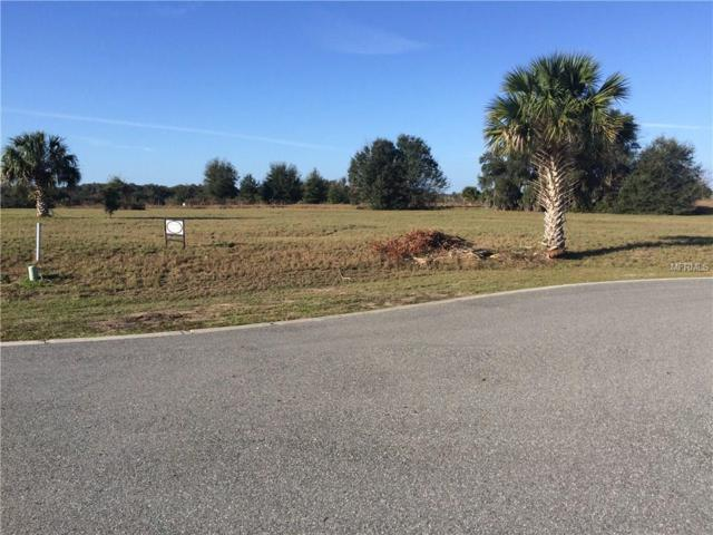 Bee Meadow, Eustis, FL 32736 (MLS #O5536798) :: G World Properties