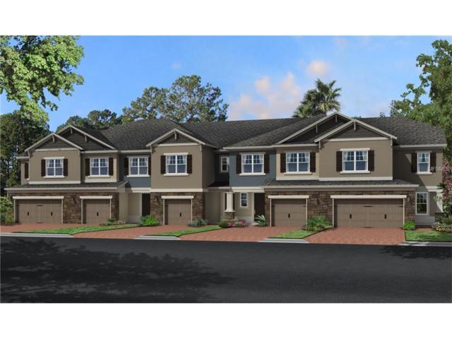 15136 Sunrise Grove Court, Winter Garden, FL 34787 (MLS #O5537034) :: KELLER WILLIAMS CLASSIC VI
