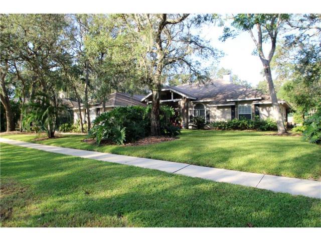 256 Shady Oaks Circle, Lake Mary, FL 32746 (MLS #O5537249) :: Mid-Florida Realty Team