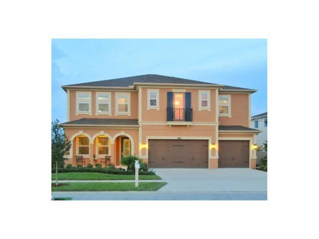2370 Gwynhurst Boulevard, Wesley Chapel, FL 33543 (MLS #O5537447) :: Cartwright Realty