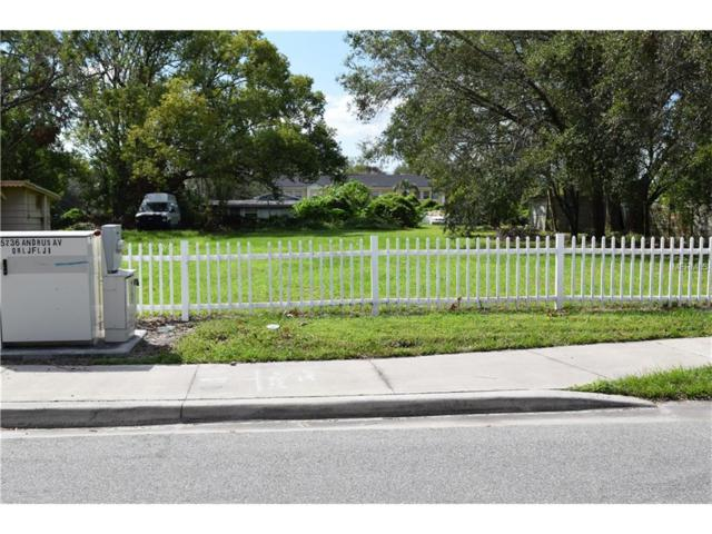 5242 Andrus Avenue, Orlando, FL 32810 (MLS #O5537512) :: KELLER WILLIAMS CLASSIC VI