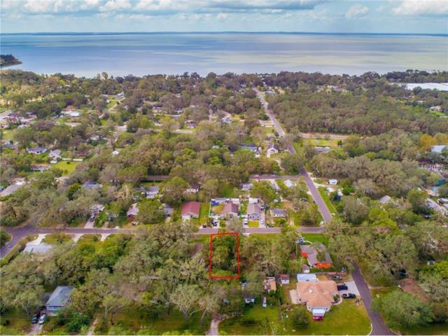 Summer Haven Lane, Apopka, FL 32703 (MLS #O5537760) :: Team Bohannon Keller Williams, Tampa Properties