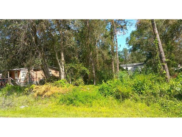 18533 16TH Avenue, Orlando, FL 32833 (MLS #O5538061) :: Griffin Group