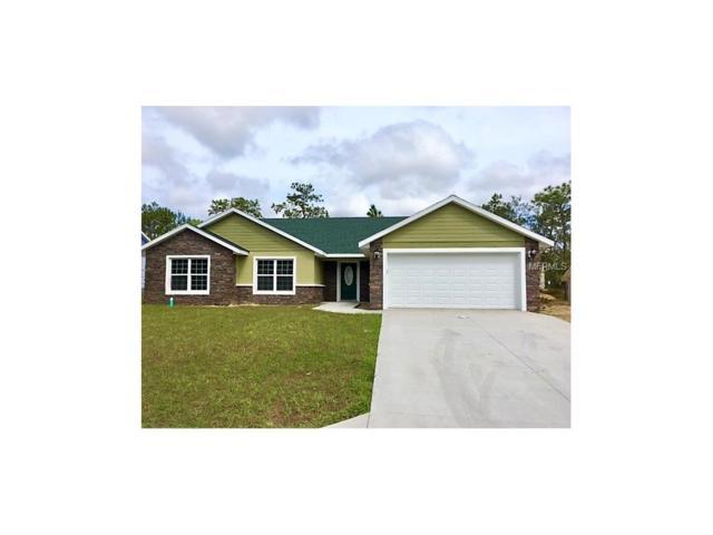 5341 W Tortuga Loop, Lecanto, FL 34461 (MLS #O5540924) :: The Duncan Duo & Associates