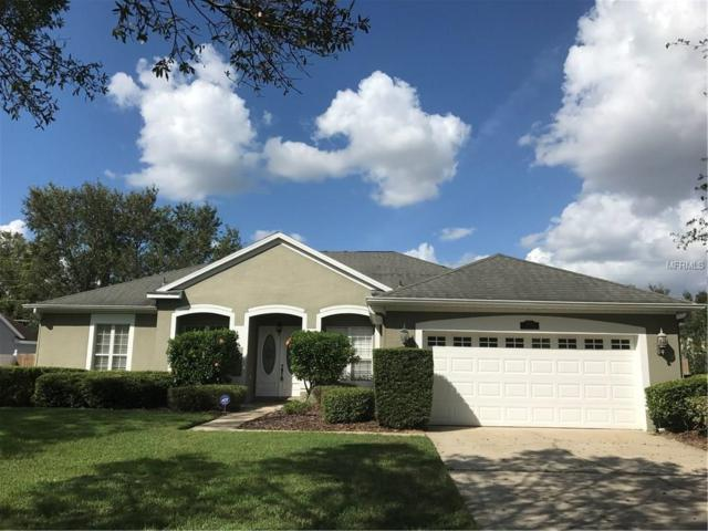 10187 Pointview Ct, Orlando, FL 32836 (MLS #O5540931) :: Premium Properties Real Estate Services