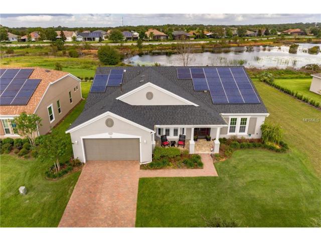 356 Salt Marsh Lane, Groveland, FL 34736 (MLS #O5540972) :: Baird Realty Group