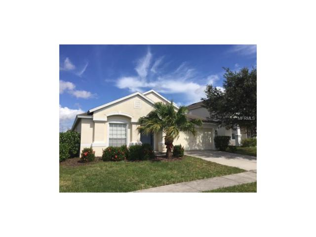 30349 Colthurst Street, Wesley Chapel, FL 33545 (MLS #O5541570) :: Arruda Family Real Estate Team