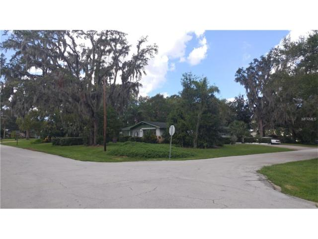 11103 Lake Butler Boulevard, Windermere, FL 34786 (MLS #O5541808) :: Premium Properties Real Estate Services