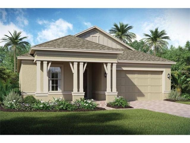 1800 Hawksbill Lane, Saint Cloud, FL 34771 (MLS #O5541909) :: Sosa | Philbeck Real Estate Group