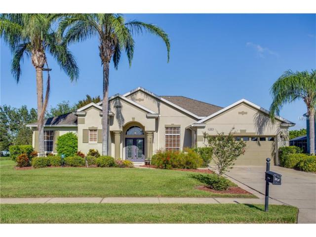 2039 Harbor Cove Way, Winter Garden, FL 34787 (MLS #O5541956) :: RE/MAX Realtec Group